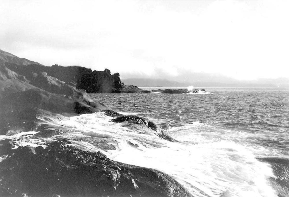 Kystlandskap. Havet i bakgrunnen.