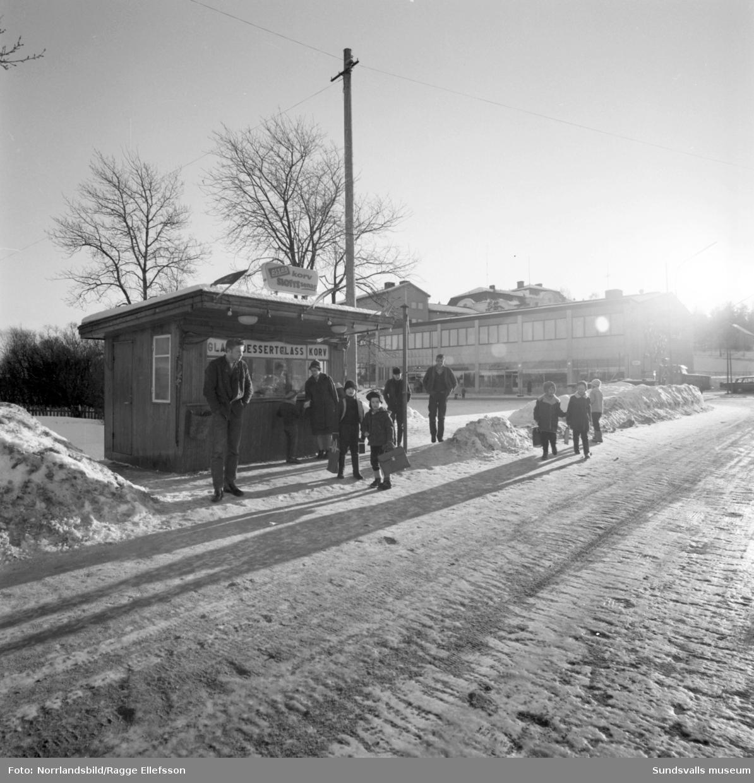 Hus, gator och människor i Timrå. Området Tallbacken med bronsskulpturen Smålandsflickorna av Thorwald Alef, Mariedalsskolan, en korvkiosk vid Köpmangatan och simhallen.