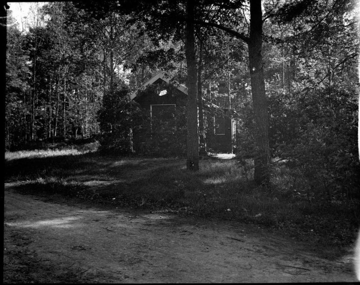 Hus i parkartad skog  Åmål  ?