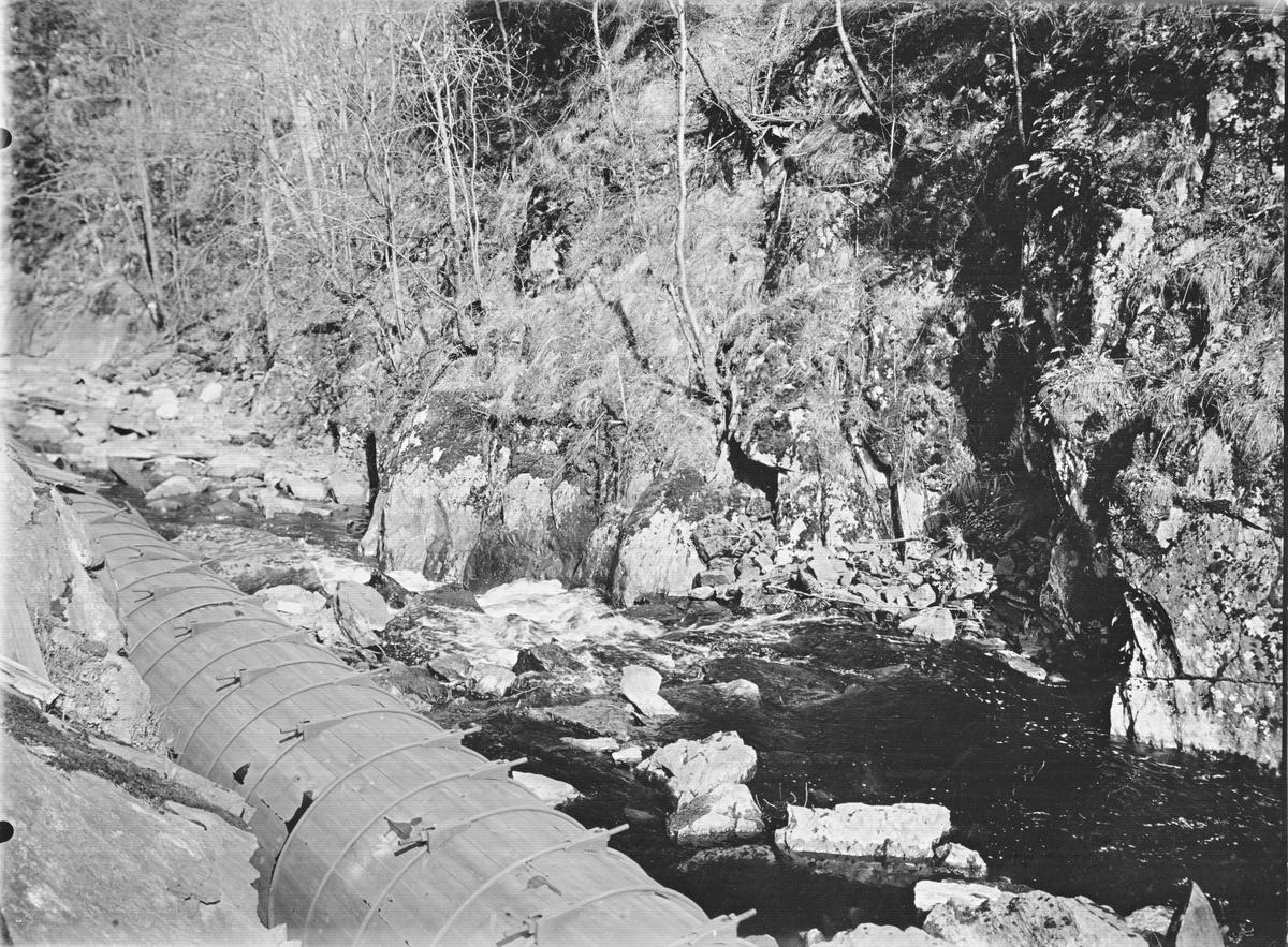 Boplats för bergärla = gråärla Motacilla baorula 11 maj 1937