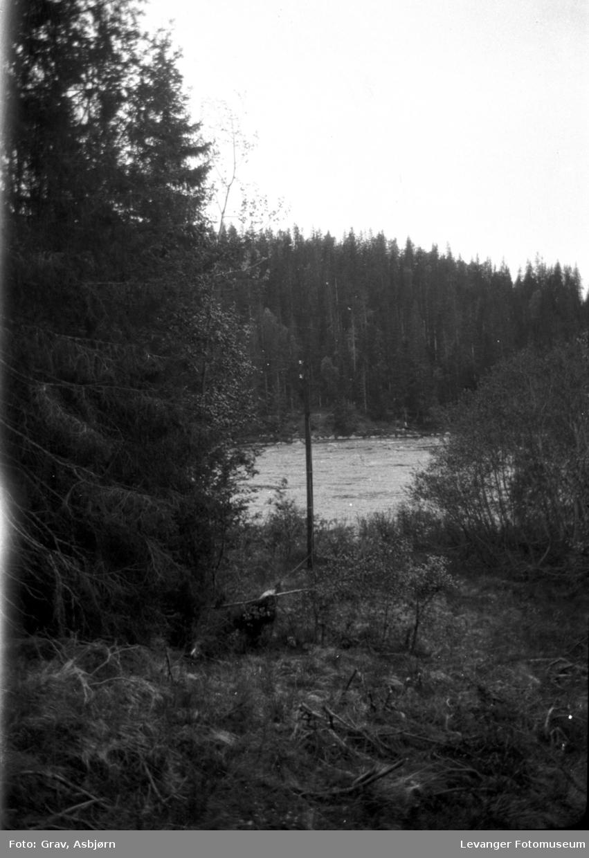 Natur med elv