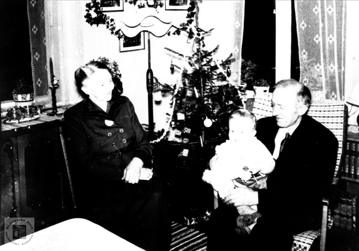 Portrett av Gunhild og Jens Eikaas med Nils Inge Haus på fanget.