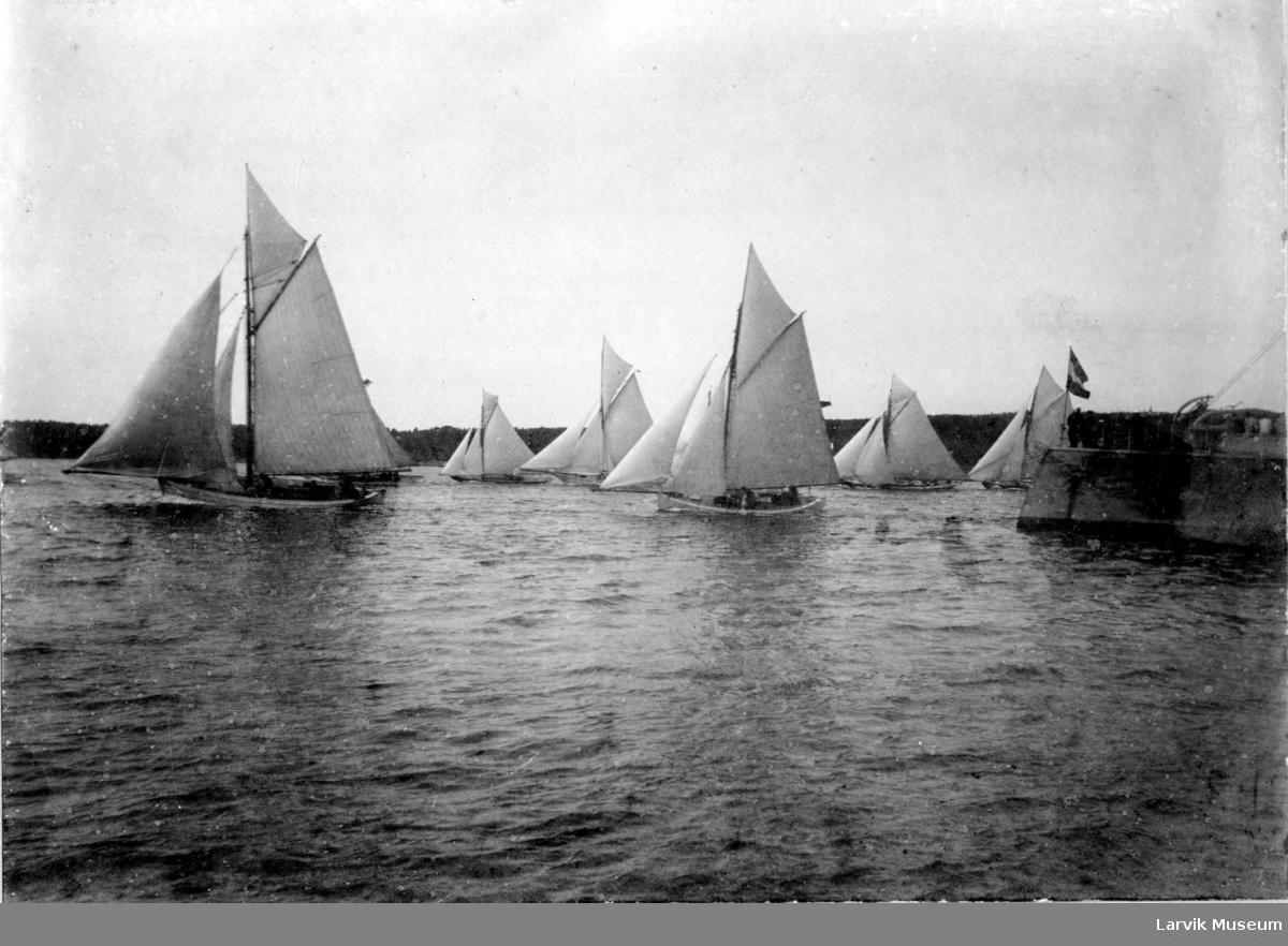 fartøy, lystbåter, seilbåtregatta