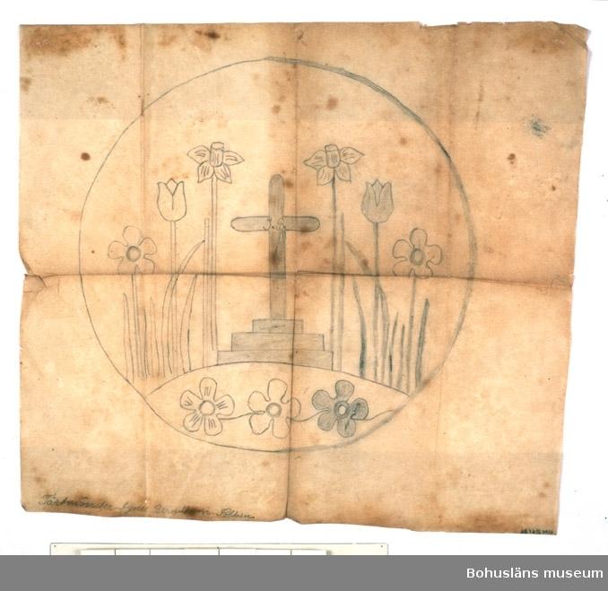 Mönsterförlaga till begravningstårta. I mitten kors på postament, omgivet av anemoner, tulpaner, påskliljor i en symetrisk komposition. Man spritsade rött vinbärsgelé med en smörpappersstrut på en gräddårta.  Begravningstårta var vanligt på begravningar till långt in på 1900-talet i Bohuslän.  Sammanhör med UM026185 - UM026187.