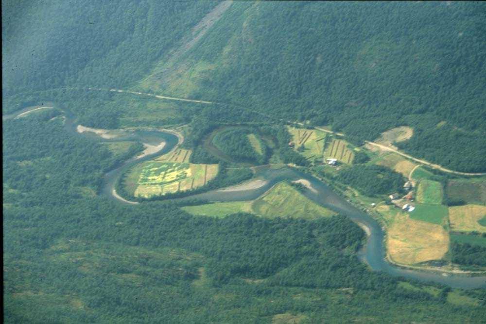 Luftfoto. En elv som slynger seg mellom skog og enger. Ett sted på Vestlandet.