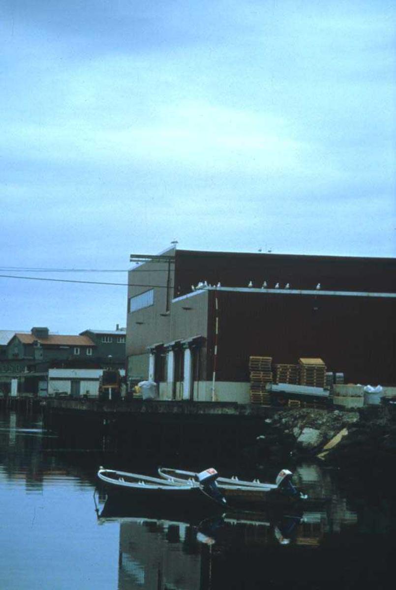 Landskap. Fiskevær i Lofoten. I ferietiden er det liten aktivitet i havna.                                                                                                                                                                                                                                                                                                                                                                                                                                                                                                                         endepunktet på Lofotveien