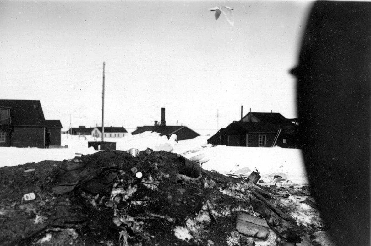 Avfallsplass i Ny Ålesund. Noen bygninger i bakgrunnen. Snø på bakken.