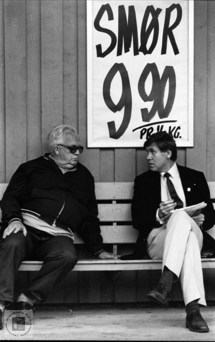 Møte på høgt plan. Karl Kolstad og Gunnar Berge