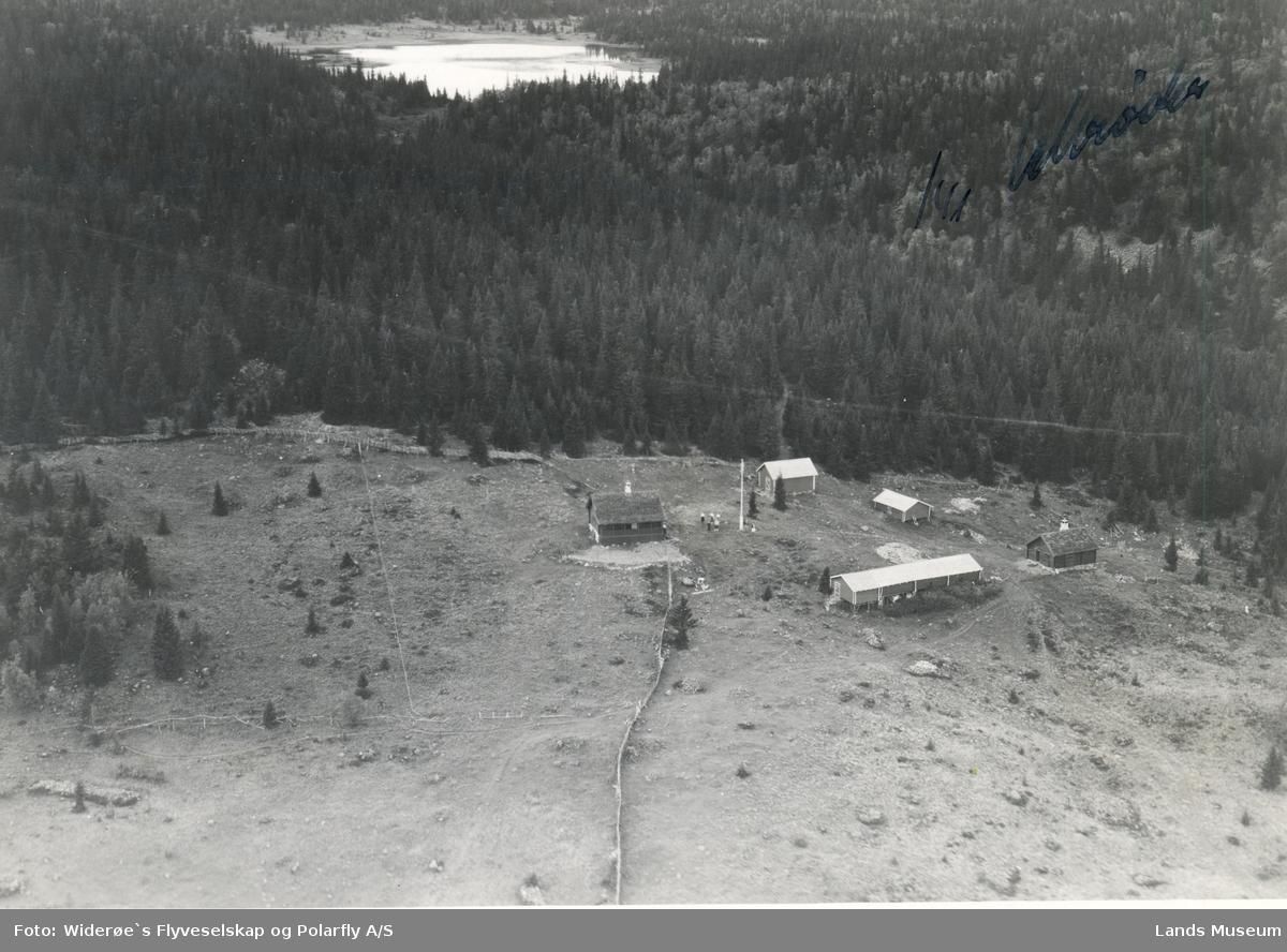 Flyfoto Jensvollsetra