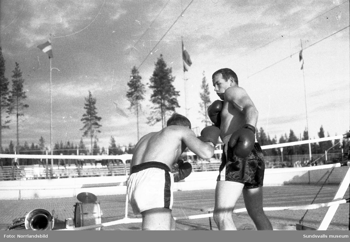 """Nyblivna boxningsvärldsmästaren i tungvikt, Ingemar Johansson,  var huvudattraktion vid en boxningsgala på Timrå idrottsplats. Johansson hälsades välkommen av disponent Orvar Rydin och det bjöds bland annat på en uppvisningsmatch mellan """"Ingo"""" och hans lillebror Rolf, en intervju av Sundsvalls boxningpappa Gillis Eriksson och därefter köade autografjägarna för att få världsmästarens namnteckning i sina block."""