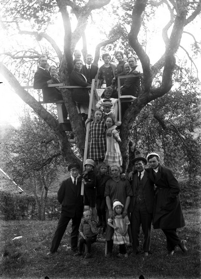 En grupp människor samlade kring och i ett träd, flera av dem släktingar till fotografen Oscar Färdig