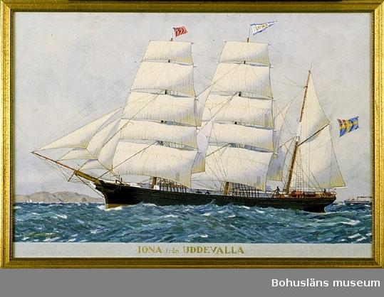 Iona från Uddevalla