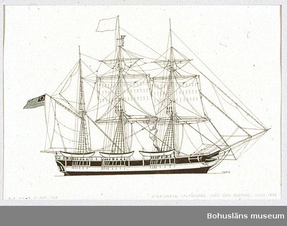 Montering/ram: Passepartout av tunn grå kartong; 55 x 66 cm, Amerikansk valfångare från 1850-talet, på jakt efter spermacetival. Övrig historik se UM72.26.001.