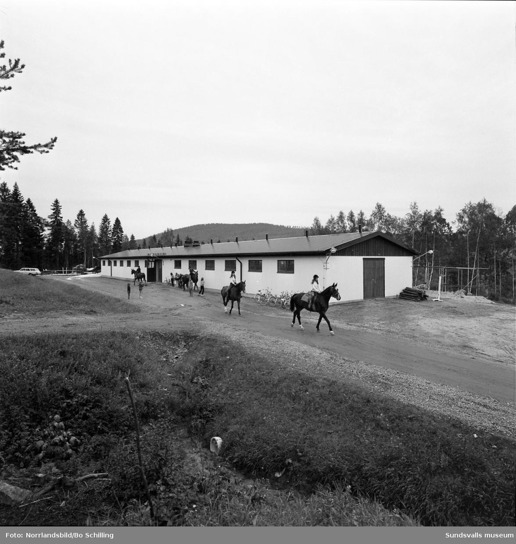 Sundsvalls ridklubbs nya stall i Kungsnäs, interiör och exteriör.
