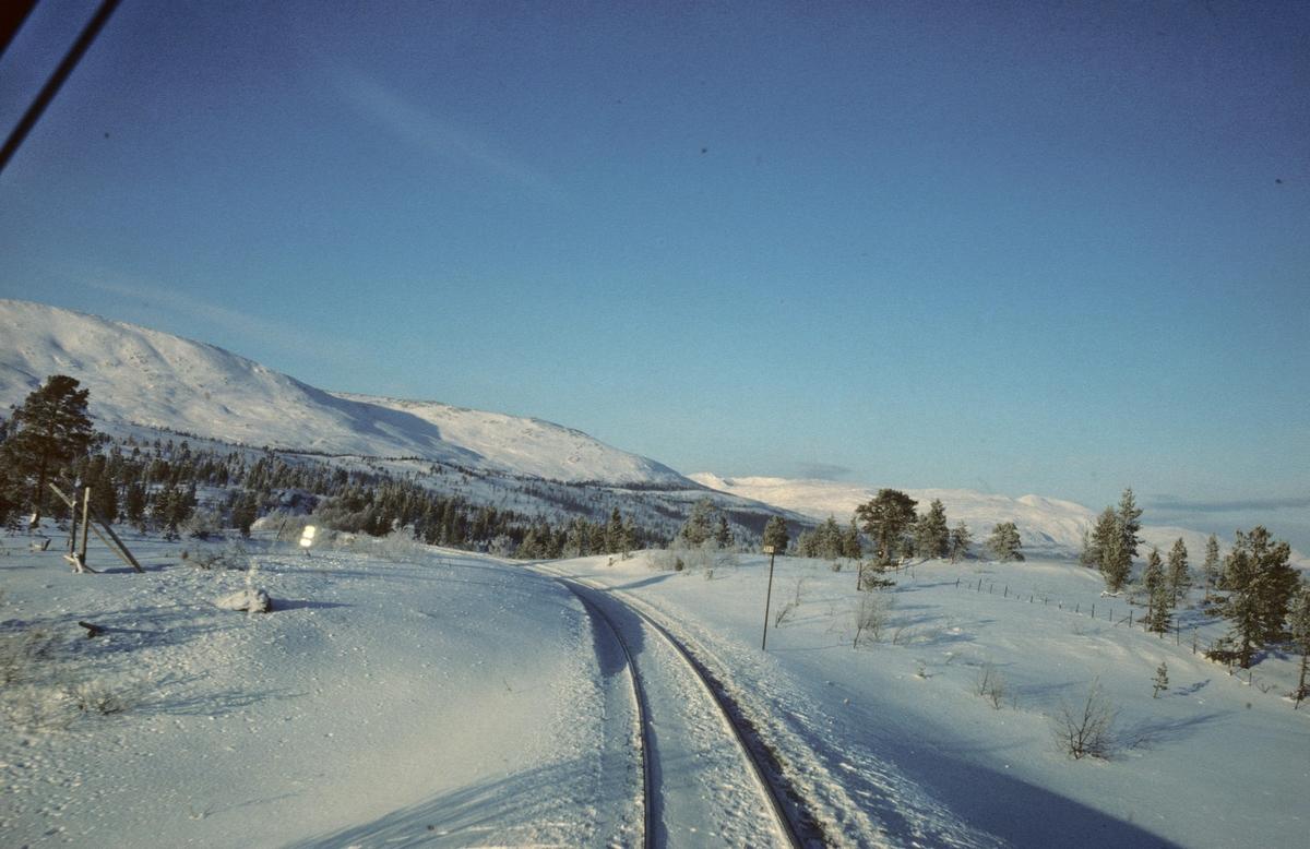 Utsikt fra lokomotivet i NSBs dagtog Trondheim - Bodø ved Sefrivatn.
