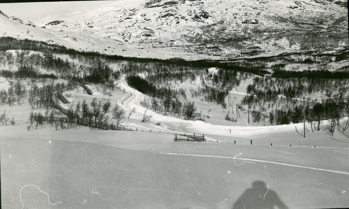 Snødekt fjellandskap med vei
