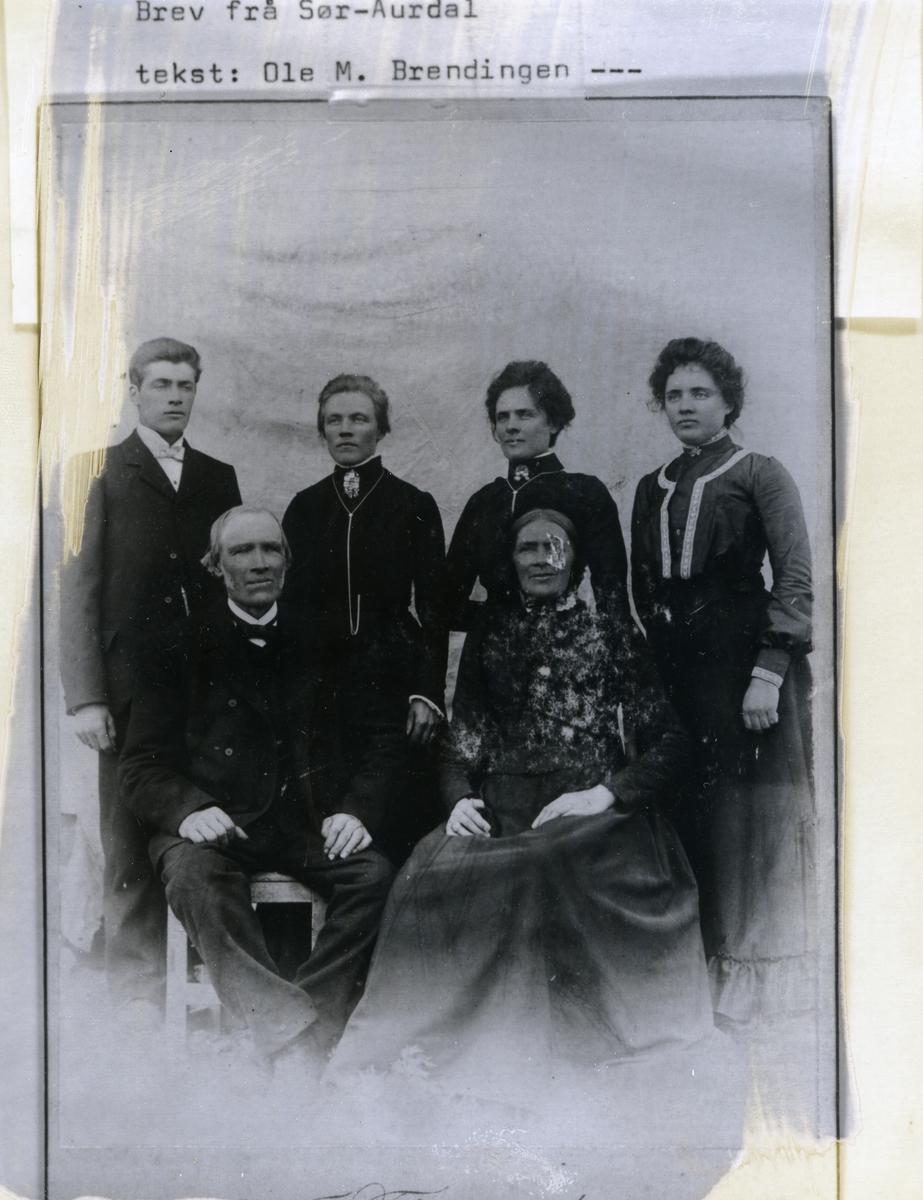 Familieportrett