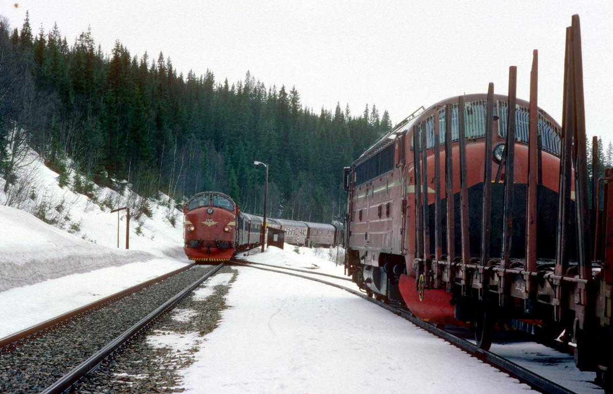 Kryssing mellom godstog 5772 og hurtigtog 451 i Namsskogan.
