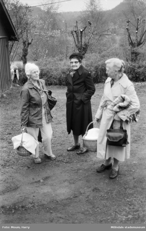"""Gökotta vid hembygdsgården Börjesgården i Hällesåker, Lindome, år 1985. """"Svea Johansson, Alice Karlsson och Elsa Hellgren hade tagit med välfyllda kaffekorgar till gökottan i Börjesgården.""""  För mer information om bilden se under tilläggsinformation."""