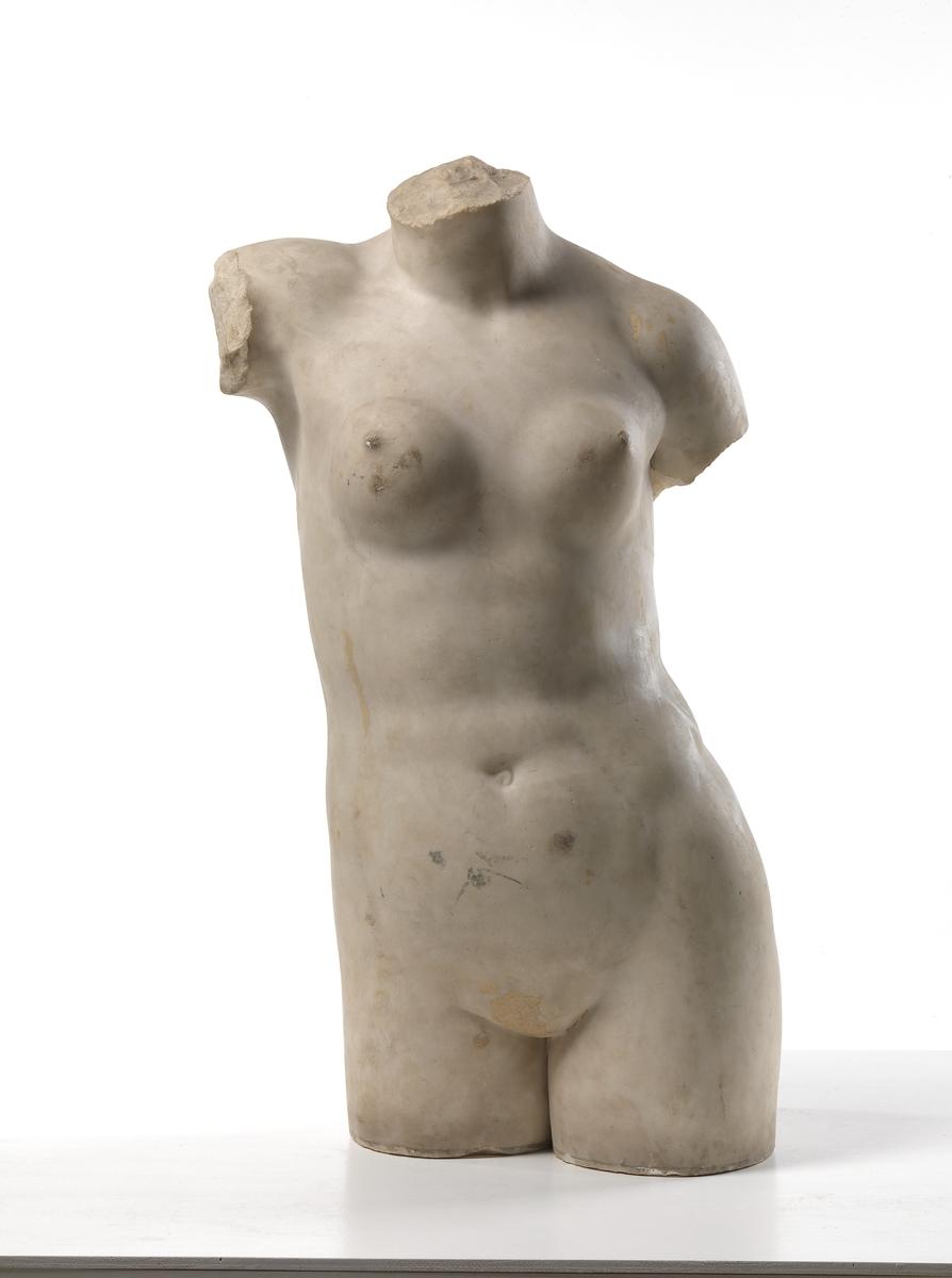 Afrodite Anadyomene [Torso]