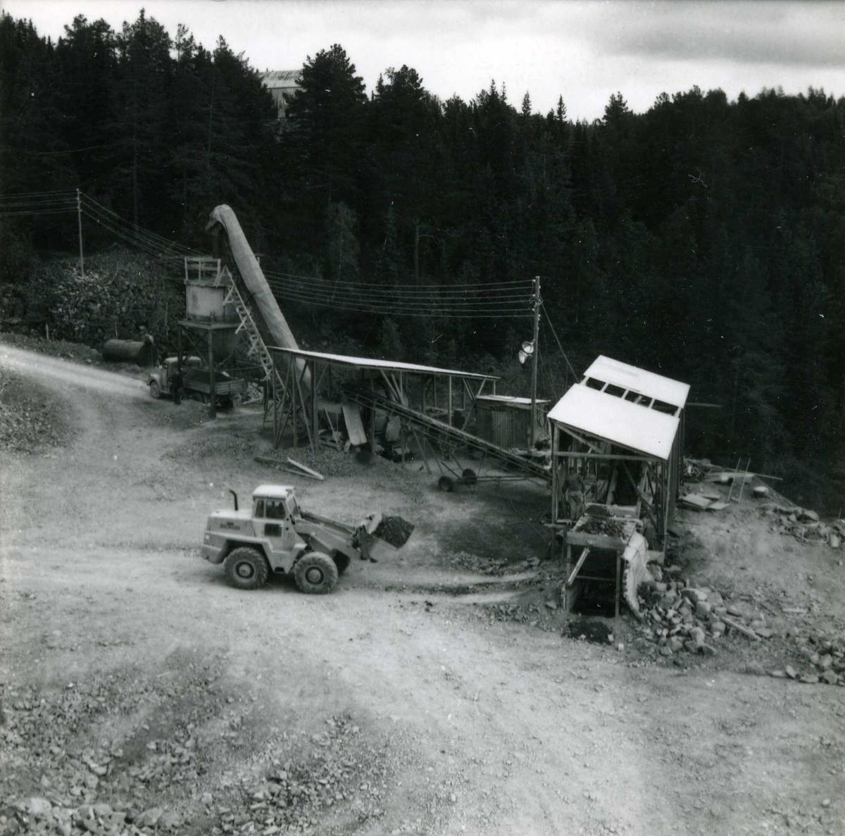 Tillopstunnet frå Vesås  (131)