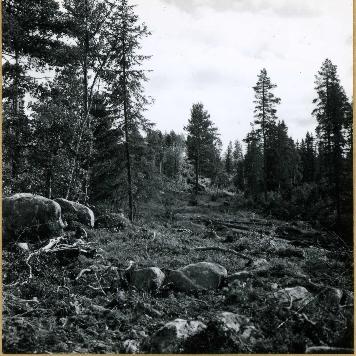 Kraft området. Fellesanlegg (11)