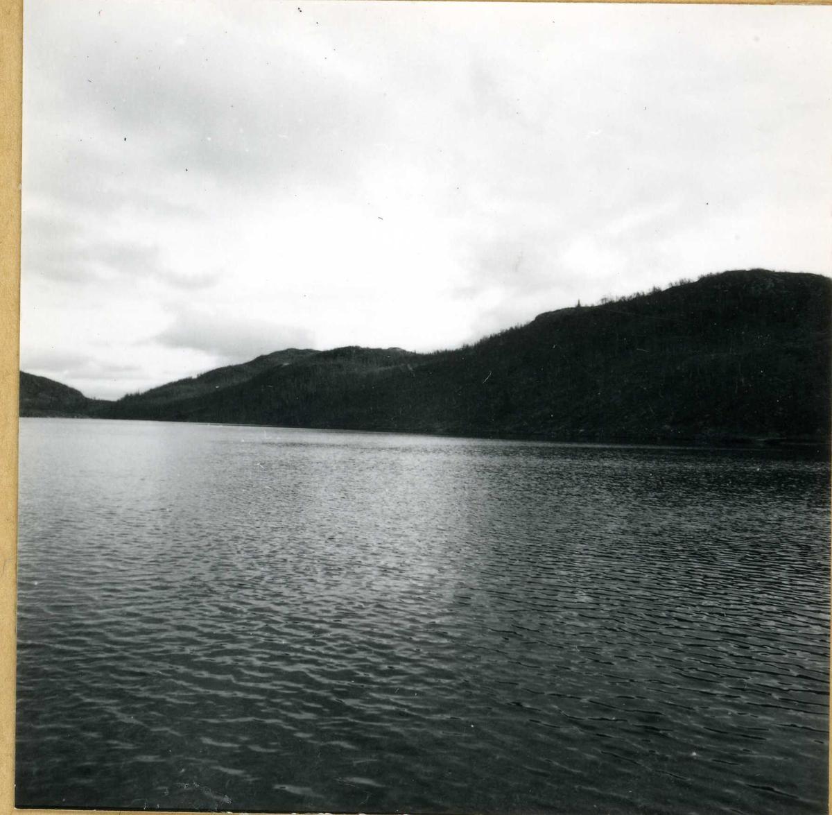 319  Utsikt over vatn.
