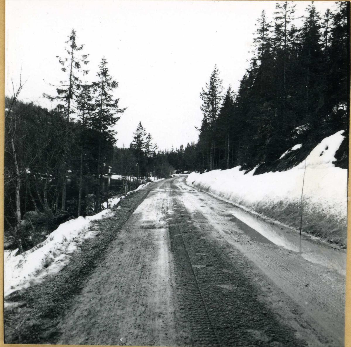 april 64      31