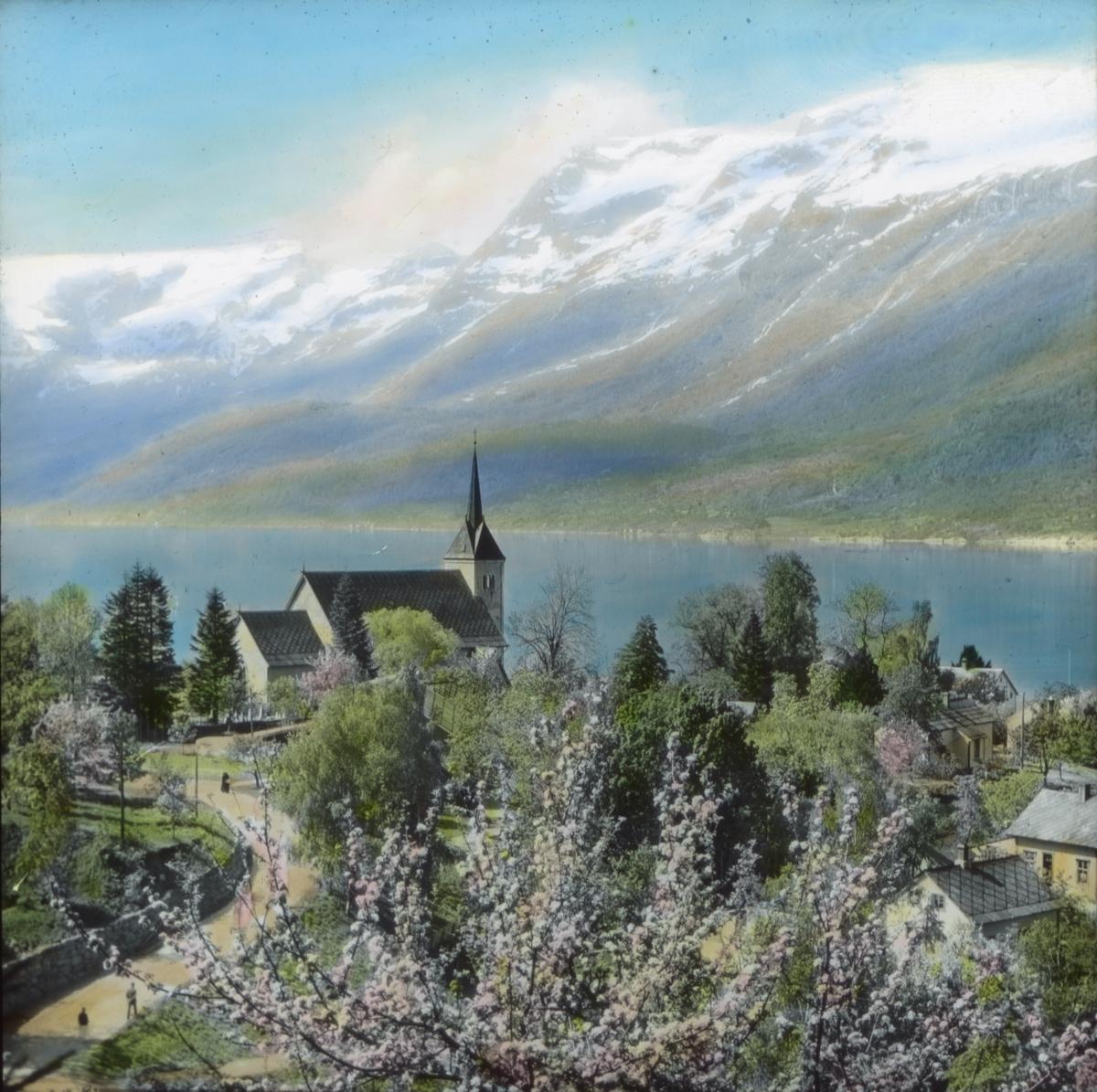 """Håndkolorert dias. Utsyn over Hardangerfjorden med blomstrende frukttrær i forgrunnen. En kirke ligger på et nes. I bakgrunnen sees snødekte fjell. Del av Wilses serie kalt """"Brudeferden""""."""