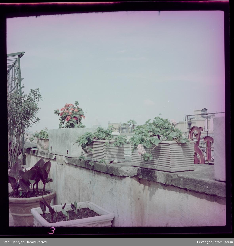 Fra takterrassen i Roma, trolig hotellet fotografen bodde under oppholdet.