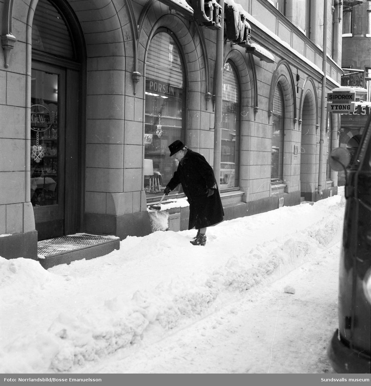 Vinterbilder från Stenstaden med bland annat en arbetshäst och kärra på Esplanaden.