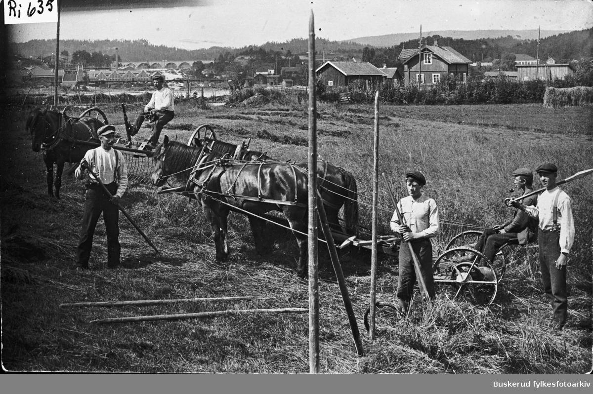 Slåtten på Westerntangen i Hønefoss. F.h. Anders Wesyern, Lars Western,, Karl Western