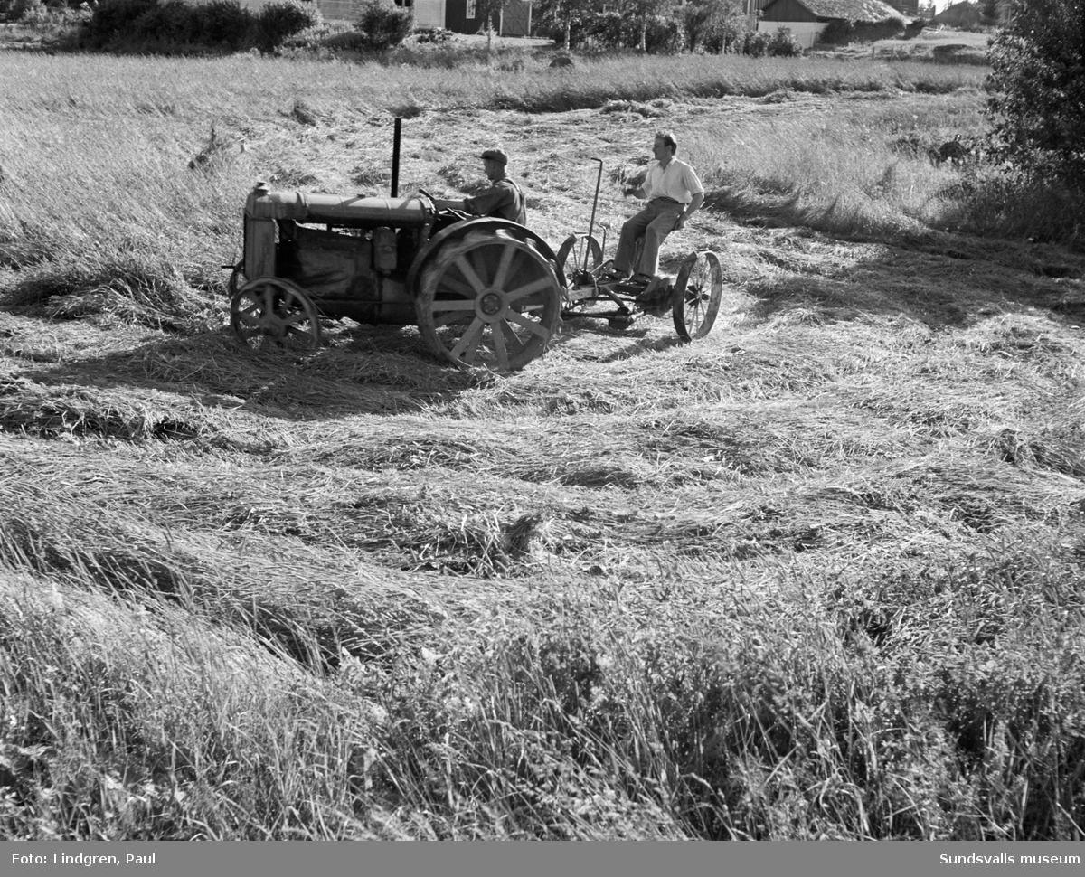 Traktor med slåttermaskin i arbete.