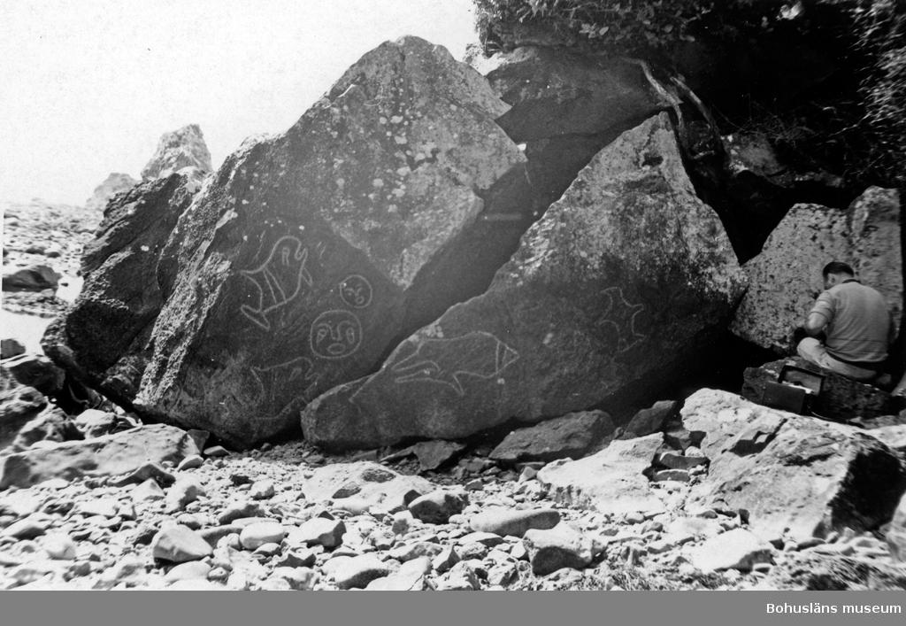 Ristningar på stenar, Cape Alava, Olympic National Park, Washington