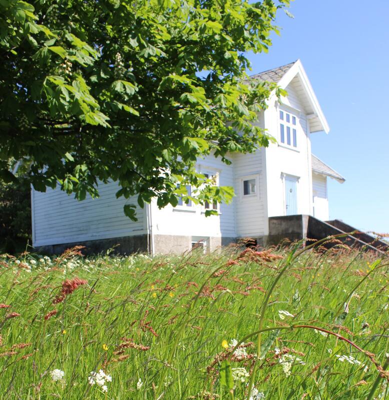blomstereng og gardshus bak tre. Foto/Photo