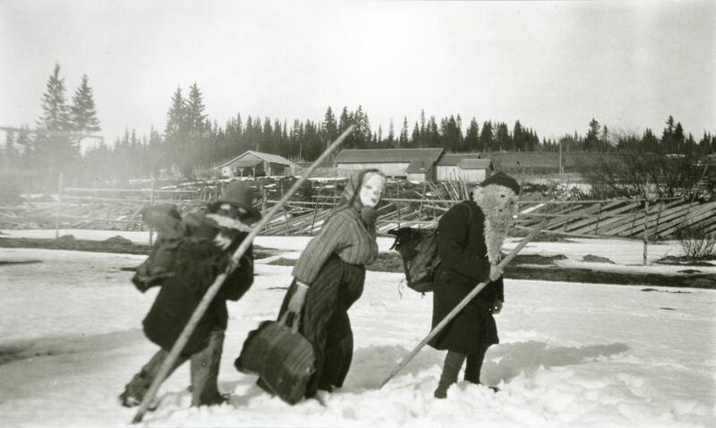 Julebukker fra Galåsen (Foto/Photo)