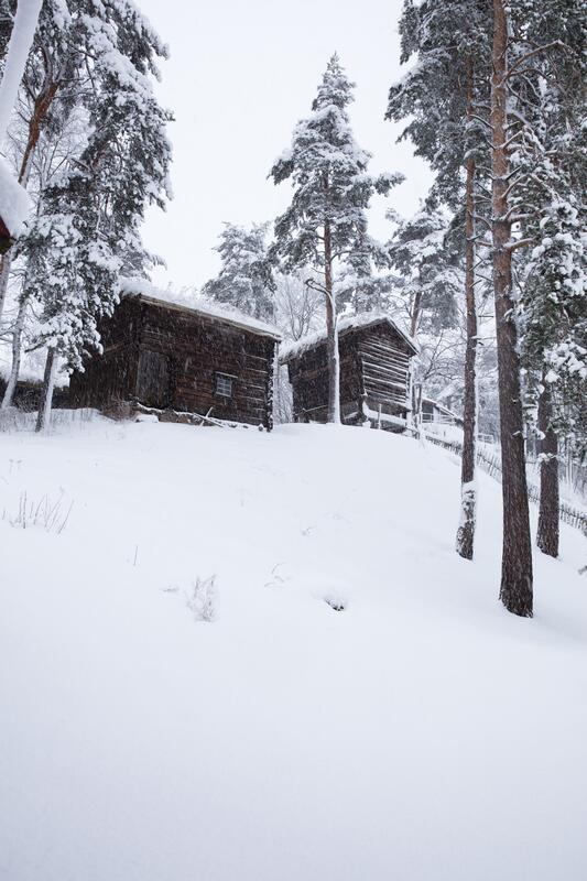 Vinterstemning i Friluftsmuseet (Foto/Photo)