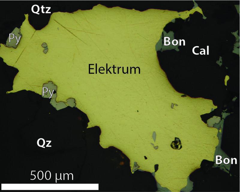 Mikroskopbilde av gullmalm fra Skara. I denne prøven inneholder elektrum omtrent 85 % gull og 15 % sølv. Det gule mineralet er elektrum. Andre mineraler: Qtz = kvarts, Py = svovelkis, Cal = kalsitt, Bon = bournonitt. (Foto/Photo)