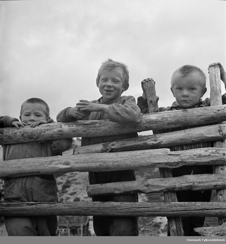 Gánddažat leat stoahkamin Ássebávttis, 1940 geasi: Iiddá Biret Niillas, Nils Adolf Balto (1935-2007), ovttas iežas vilbeliiguin; vieljašguoktáin Iiddá Niillas Ragnariin, Ragnar Balto (r. 1932) ja Ovlláin, Ole Balto (r. 1936).  Jagis 1827:s juo muitaluvvo Ássebákti leat Kárášjot-ássiid geassesadjin. Árbevirolaččat fárrejedje geassesadjái jonssotáigái, geassemánu 24. beaivái ja máhcce bárdebeaivvi, borgemánu 24. b. 1950-logu loahpas nogai geassesadjái fárren Ássebáktái.  Guttene holder på med lek på seterplassen i Ássebákti, sommeren 1940: Nils Adolf Balto (1935-2007), sammen med sine fettere, brødrene Ragnar (f. 1932) og Ole Balto (f. 1936). Allerede i 1827 fortelles om Ássebákti som Karasjok-innbyggernes sommerboplass eller seter. Tradisjonelt flyttet man til seters innen Jonsok (St. Hans), 24. juni og returnerte 24. august. På slutten av 1950-tallet ble det slutt med seterdrift i Ássebákti.