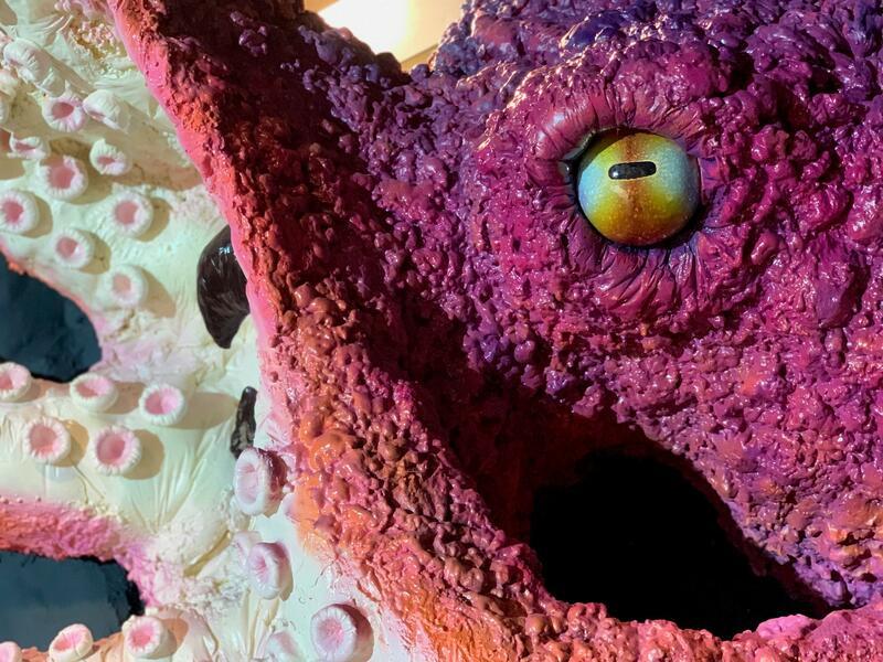 modell av en kjempestor blekksprut, krake (Foto/Photo)