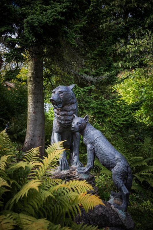 To ulveskulpturer i hagen på Asker museum. (Foto/Photo)