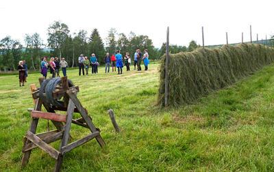Småsetran. Foto/Photo
