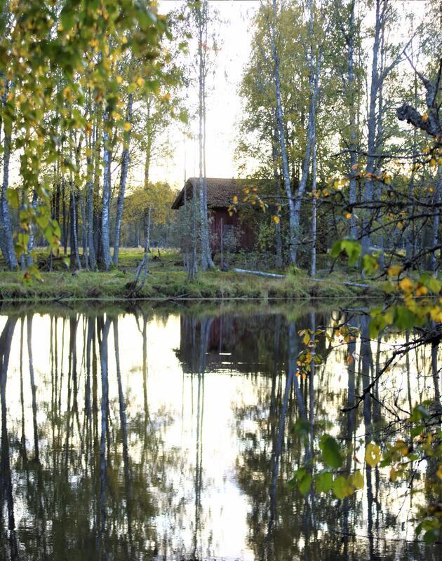 Foto av en gammel låve på en øy (Foto/Photo)
