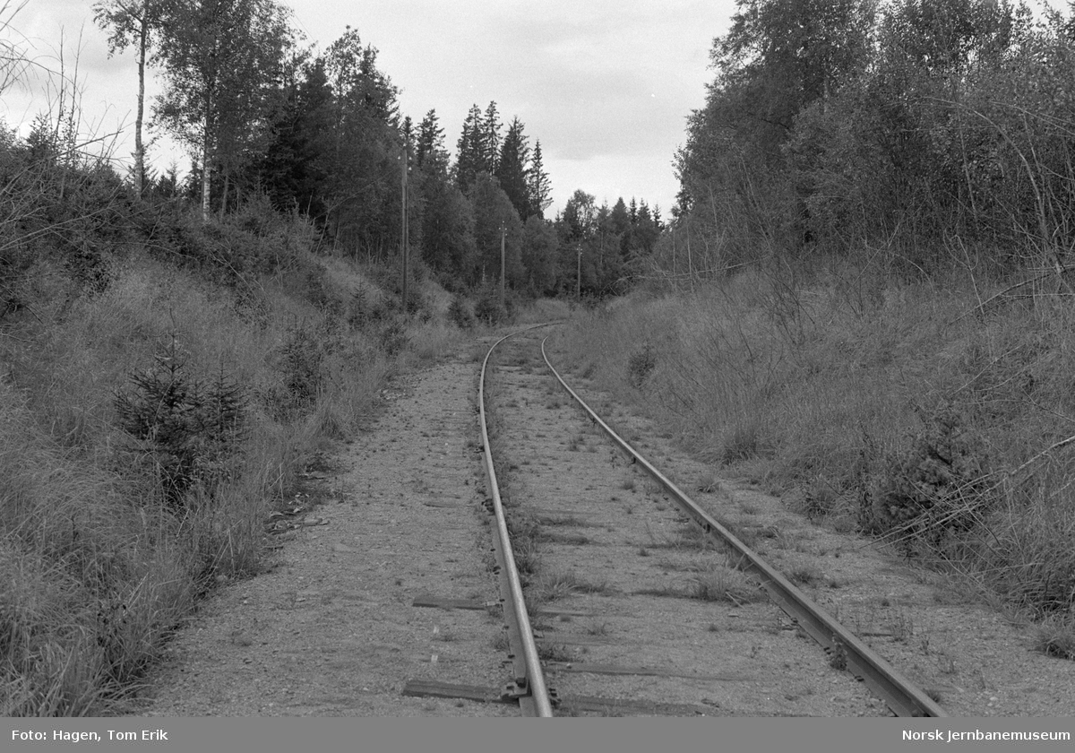 Skreiabanen mellom Bøverbru og Lena