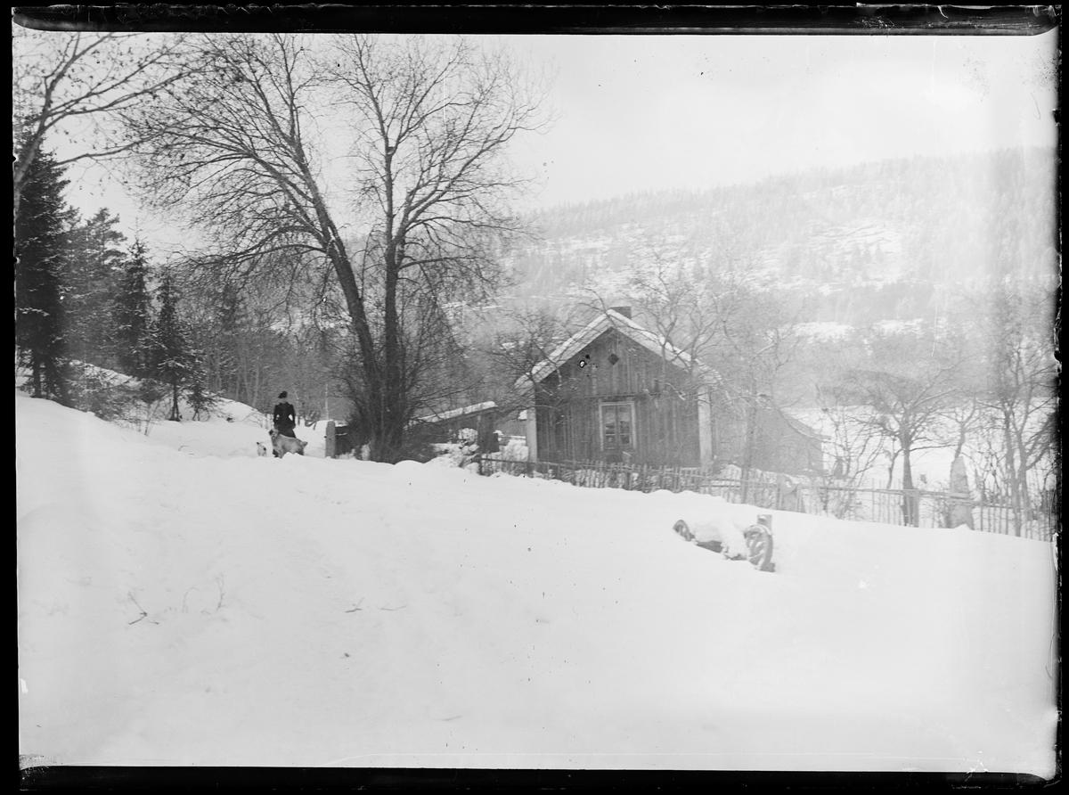 Vinterlandskap. En kvinne med to hunder. En liten hytte/hus ved et tre. En nedsnødd vogn til høyre.