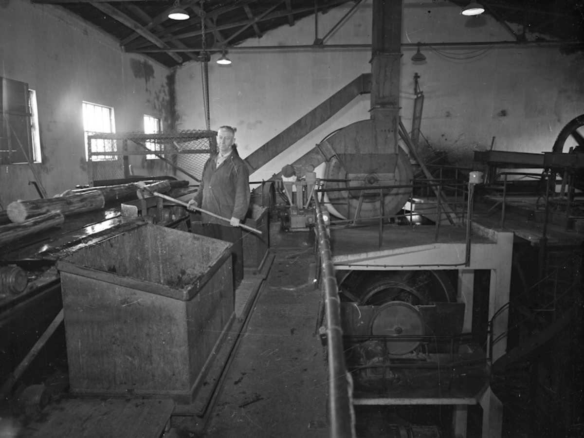 Fra Bønsdalen. Cellulosefabrikk.