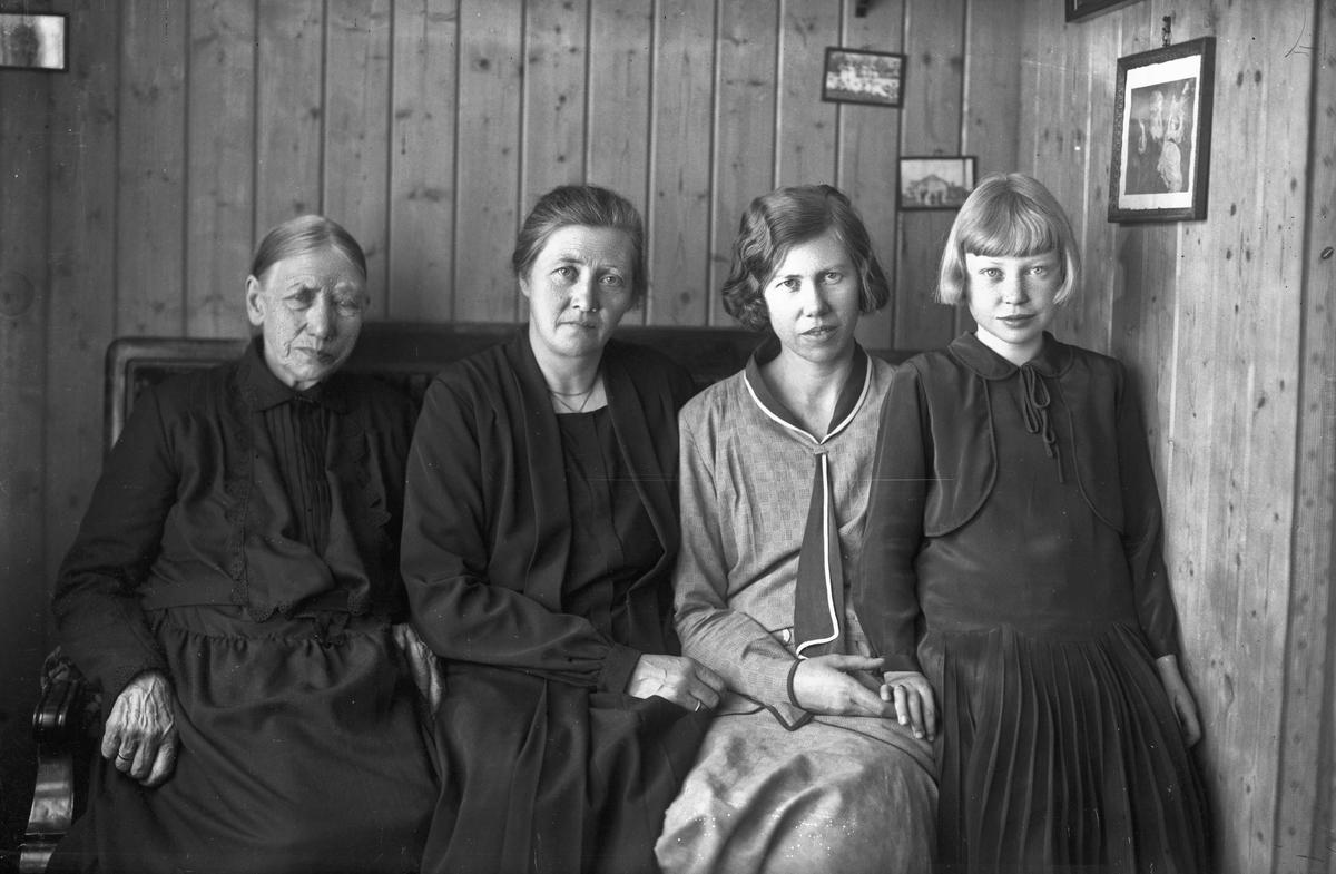 Sannsynligvis familien Hilde. 1910-20. Jenta til høyre ble senere bestyrer på Eidsvoll Kommunale Husmorskole.