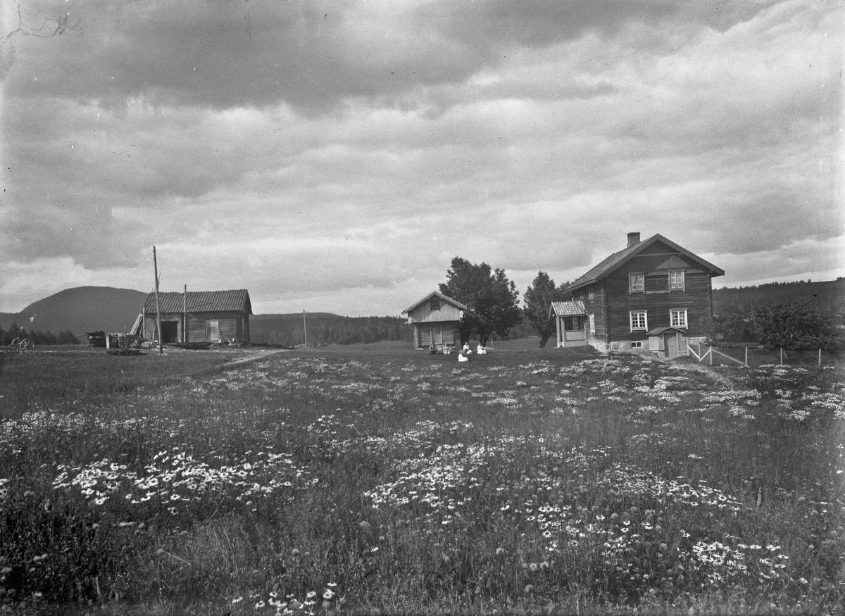 Gårdsbruk med tømmerbygninger 12.04.2013: Bildet er fa Blakkisrud i Eidsvoll. Fotografering før 1925. Skrevet av: Trond Gundersen
