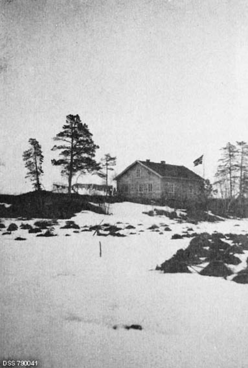 Skogvokterboligen ved Mennikas i Pasvikdalføret, Sør-Varanger kommune i Øst-Finnmark 1913.  Fotografiet er antakelig tatt mot slutten av vinteren.  Det lå fortsatt snø på bakken, men bakkekammen skogvokterboligen lå på var snøfri.  På den snødekte flata i forgrunnen ser vi også en del snøbare hauger, muligens husdyrgjødsel som var utkjørt på sledeføre, og som skulle spres og nedmyldes når våren kom.  Skogvokterboligen var en laftekonstruksjon med rektangulært grunnplan.  Det var åpenbart primært første etasje som hadde boligfunksjoner, men vinduene i gavlveggen tyder på at det kan ha vært et rom og kanskje et par alkover i loftsetasjen også.  Fra husveggen mot et par furutrær til venstre for denne skimtes ei klessnor der det hang klær til tørk.  Ved husnova, der klessnora har sitt ene forankringspunkt, skimter vi også noen menneskeskikkelser.  Til høyre, bak bygningen, varier et norsk flagg i frisk vind.  Mennikas ligger på statens grunn, i det som lenge gikk under betegnelsen Øst-Finnmark skogforvaltning.  Staten hadde imidlertid ingen husvær i området, men skogforvalteren i området hadde tillatt en kjøpmann ved navn Hans Petter Figenschou (f. 1827) å ta tømmer til ei hytte for jakt- og fiskeaktiviteter ved Mennikafossen i Pasvikelva.  Den sto ulåst og kunne brukes av alle og enhver, men var ikke noe brukbart vinterhus.  I slutten av 1890-åra konstaterte skogforvalteren i Øst-Finnmark at det var behov for ei ny skogstue i disse traktene.  Etter hundreårsskiftet ble det ansatt skog- og grensevoktere som skulle bosette seg i dette området.  I 1903 ble det bygd boliger til disse funksjonærene - «Skogly» og «Næsheim» - begge med kjøkkenstuer, kammers og to kvistrom.  Så vel funksjonærstillingene som de enkle embetsboligene ble til som et spleiselag mellom Justisdepartementet (grensevokterfunksjonene) og Landbruksdepartementet (skogvokterfunksjonene).  Til begge eiendommene ble det lagt jordarealer som kunne grøftes og overflatedyrkes til engarealer, slik at beboerne ku