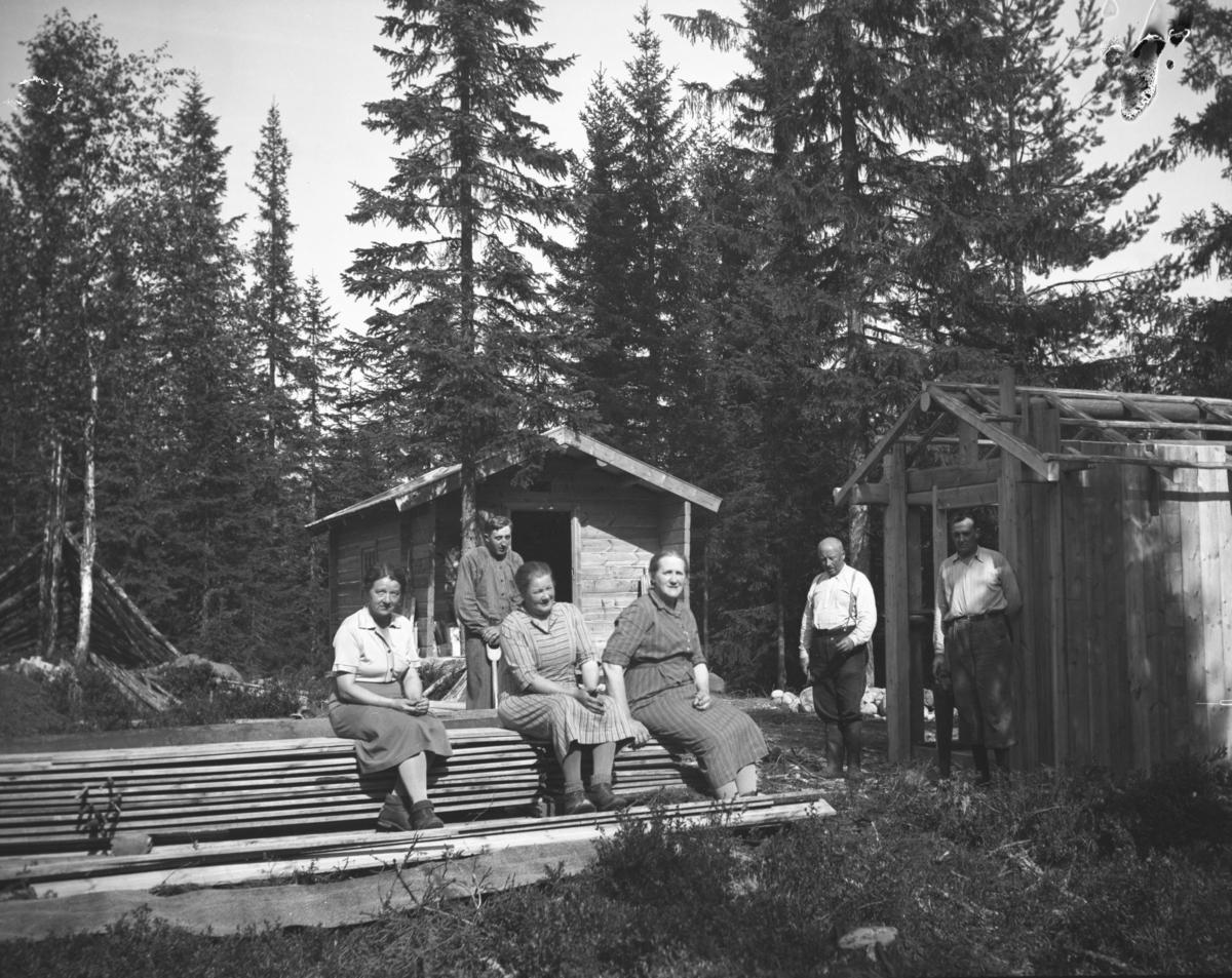 Bygging av koie, Rustad